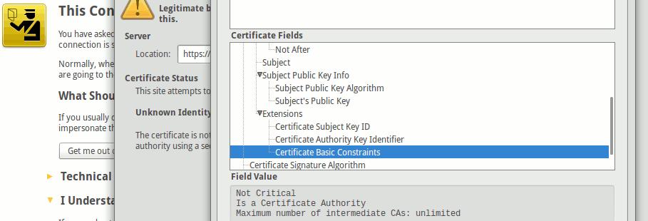 """An dem Zusatz """"Extensions"""" samt """"Basic constraints""""-Erweiterung erkennt man ein CA-Zertifikat, wie es Google mag (Ansicht aus dem Firefox-Browser)"""